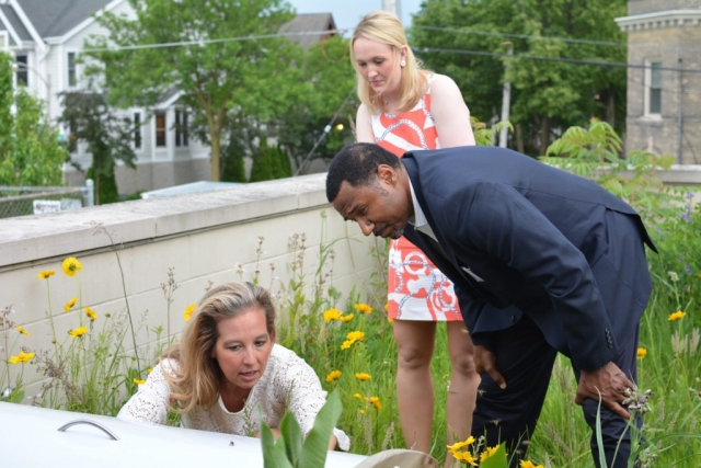 Supporters of the Urban Ecology Center examining the bee box on the Center's green roof