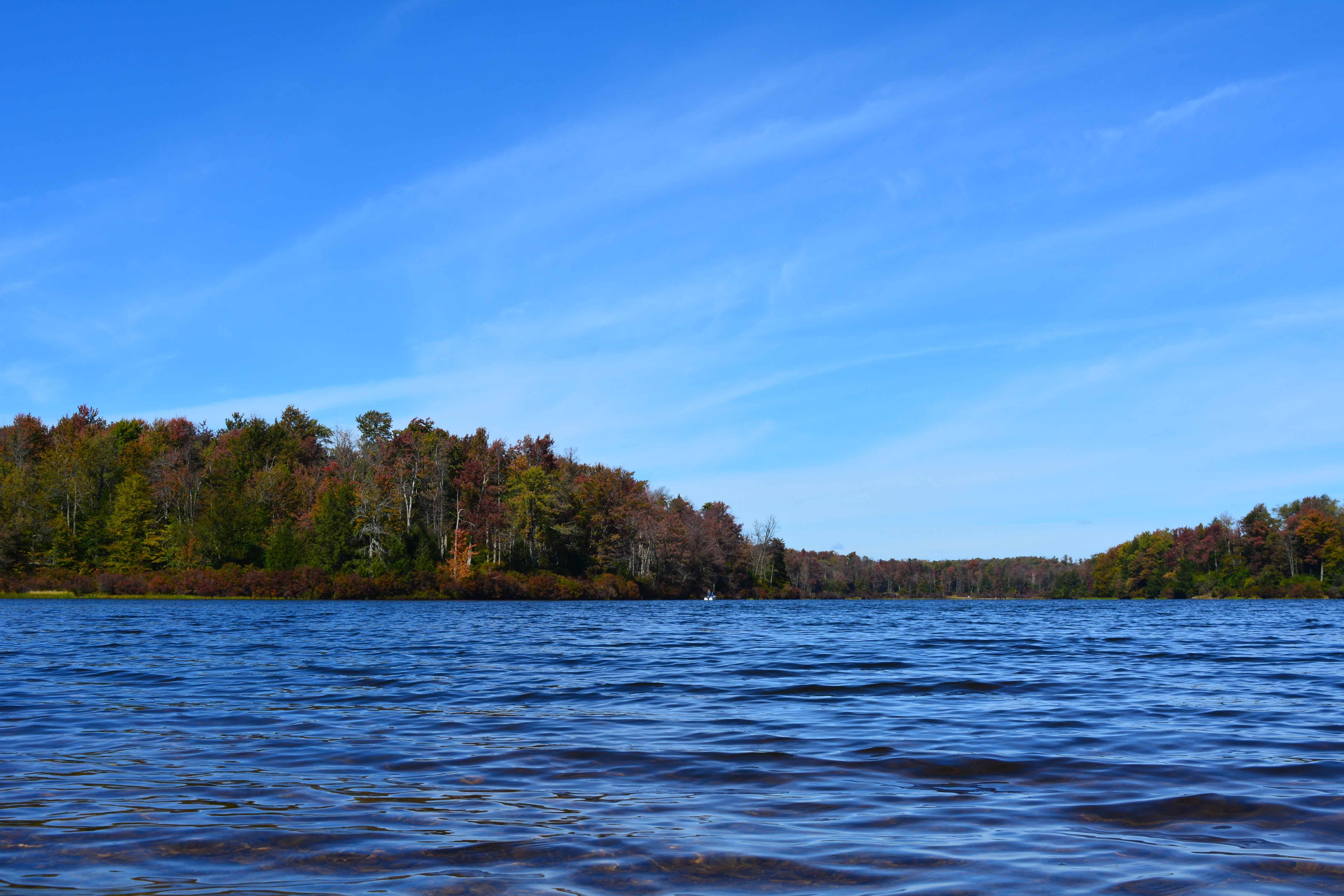 A view of a lake at Ricketts Glen State Park