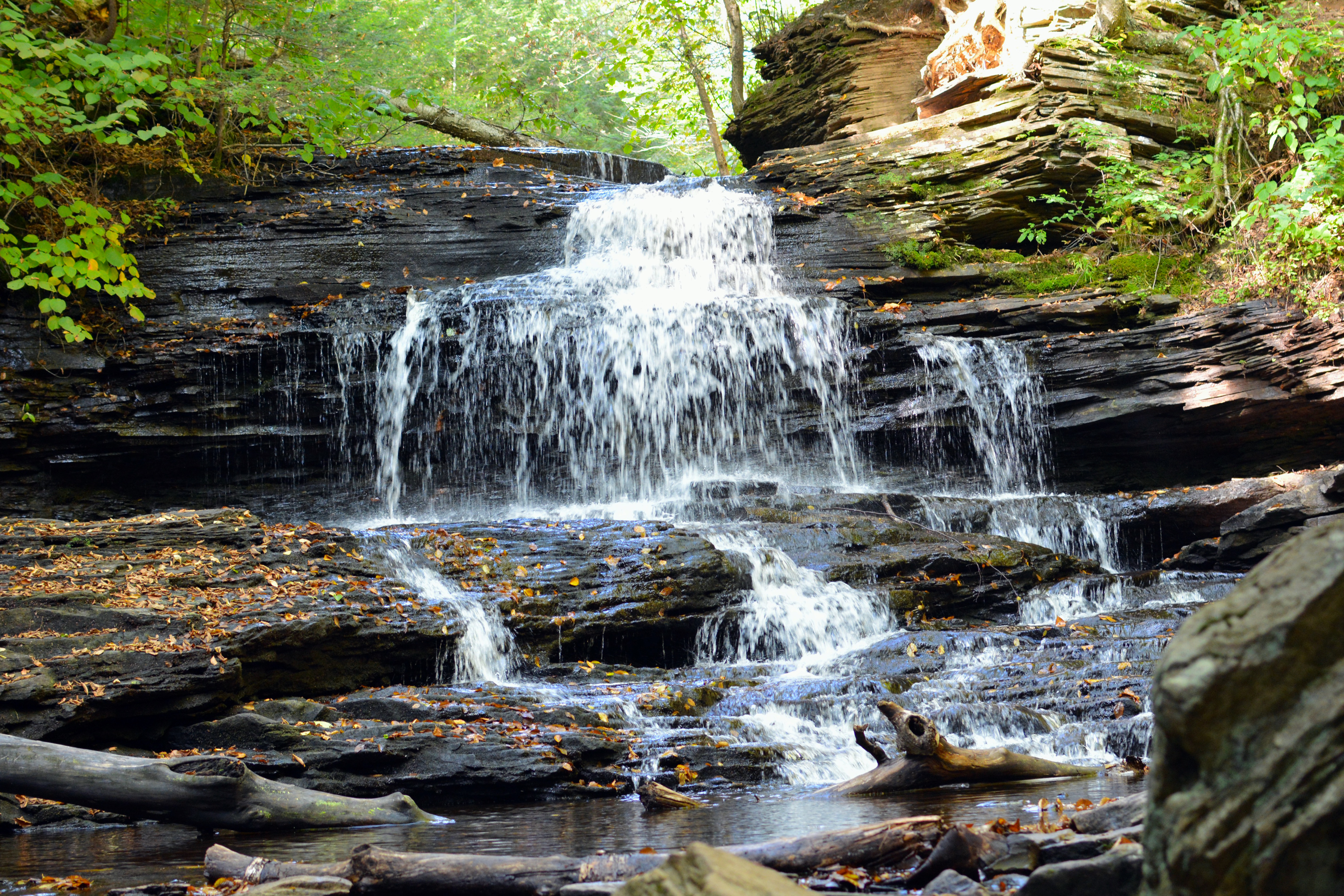 A waterfall in Ricketts Glen State Park