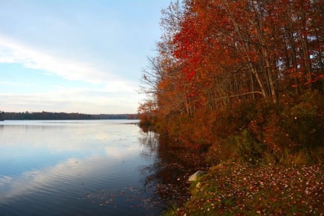 Sunrise view of Tobyhanna Lake with trees along the shore